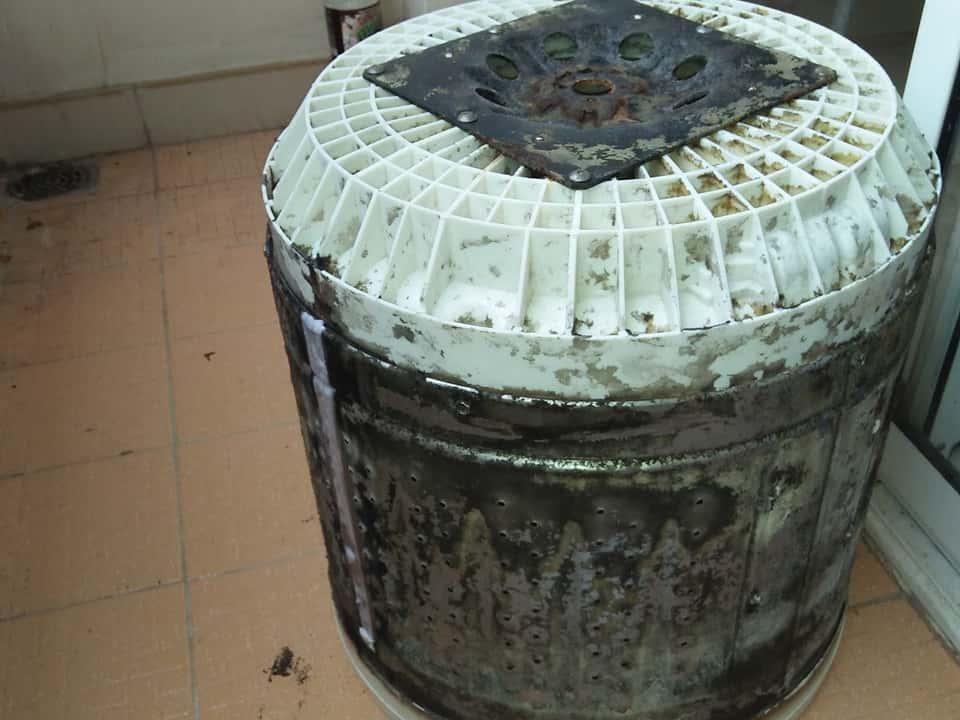 Bên trong lồng giặt của máy giặt khi tháo ra